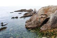 falaises quiberon bretagne