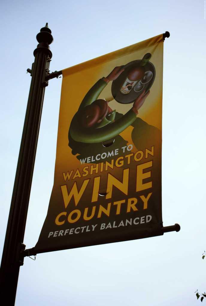 Route des vins Etats Unis (16)