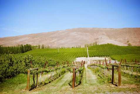 Route des vins Etats Unis (23)