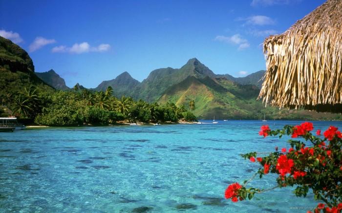 photo-of-Bahamas-Paradis